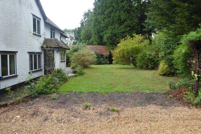 Garden of The Green, Ewhurst, Surrey GU6
