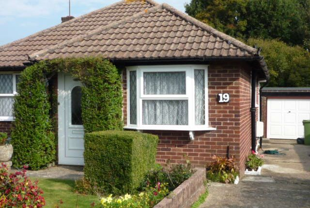 Thumbnail Bungalow to rent in Abbots Way, Fareham