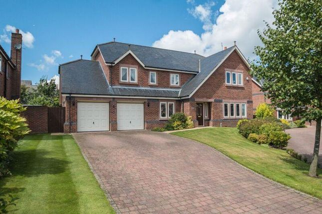 Thumbnail Detached house for sale in Bellcast Close, Appleton, Warrington