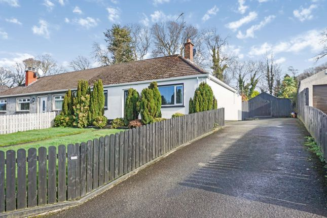 Thumbnail Semi-detached bungalow for sale in Mullaghbane Road, Armagh