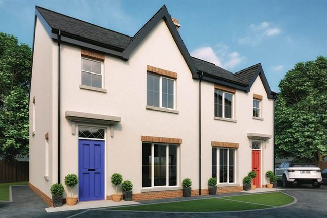 Thumbnail Semi-detached house for sale in 8, Forthill Lane, Bangor