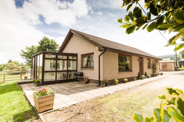 Thumbnail Cottage for sale in Law View, Lanton, Jedburgh, Roxburghshire