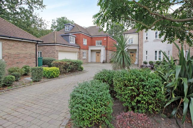 Thumbnail Detached house for sale in Twitten Grove, Bromley