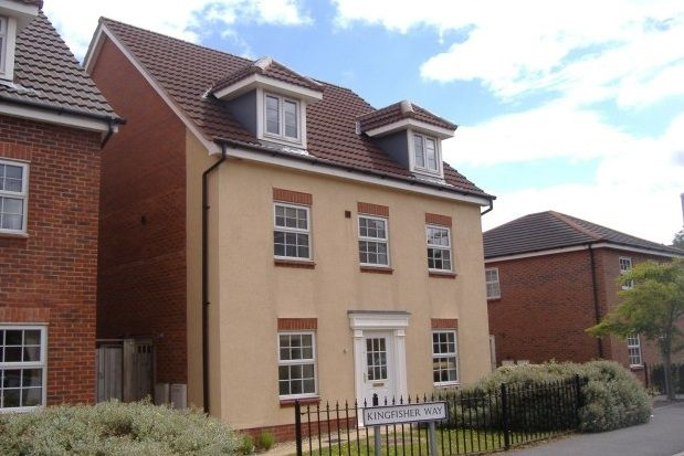 Thumbnail Detached house to rent in Kingfisher Way, Loughborough