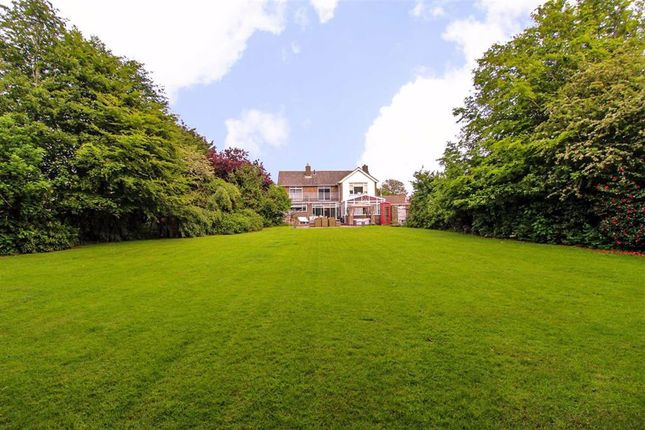 Thumbnail Detached house for sale in Harley Shute Road, St Leonards-On-Sea, East Sussex