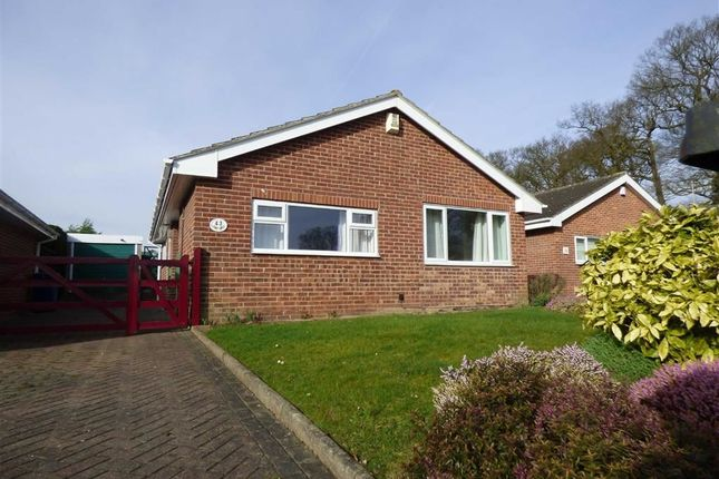 Thumbnail Bungalow for sale in Marlow Road, Gainsborough