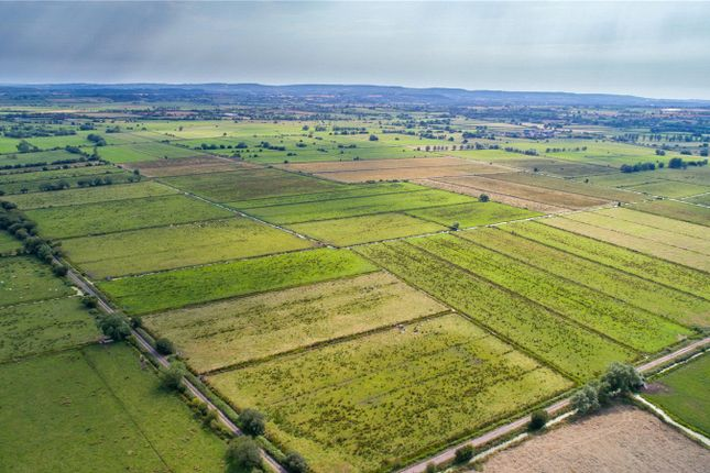 Thumbnail Land for sale in Land At Northmoor- Whole, Bridgwater, Somerset