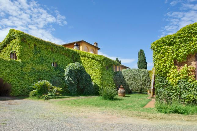 Thumbnail Farmhouse for sale in Pisa, Tuscany, Italy