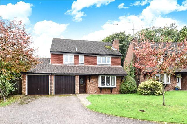 4 bed detached house for sale in Jasmine Close, Wokingham, Berkshire