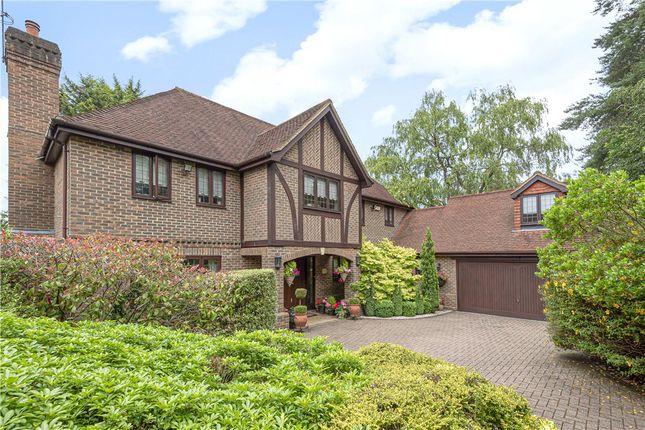 Thumbnail Detached house for sale in Snows Ride, Windlesham, Surrey