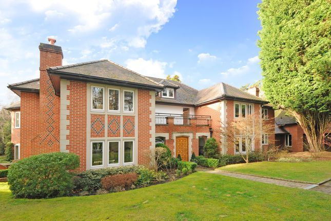 Thumbnail Detached house to rent in Prince Albert Drive, Ascot
