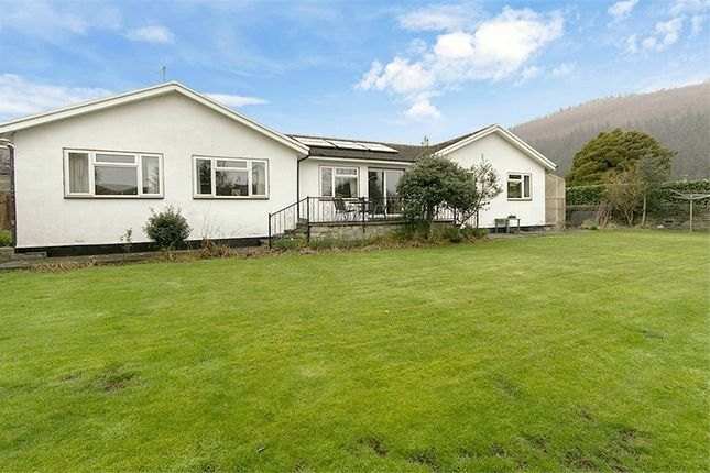 Thumbnail Detached bungalow for sale in Crabtree Walk, Knighton, Powys
