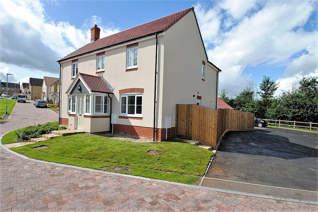 Thumbnail Detached house for sale in Whitley Meadows, Woolavington