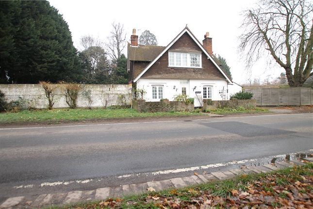 Thumbnail Detached house for sale in Windlesham Road, Chobham, Woking, Surrey