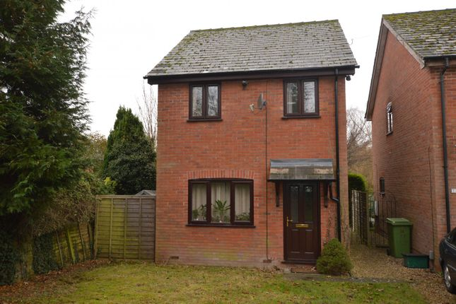 Thumbnail Property to rent in Wilberforce Road, Norwich