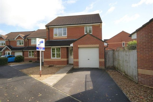 Thumbnail Property to rent in Danes Mead, Cullompton