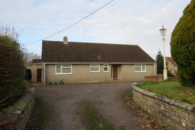 Thumbnail Detached bungalow to rent in Adber, Sherborne, Dorset