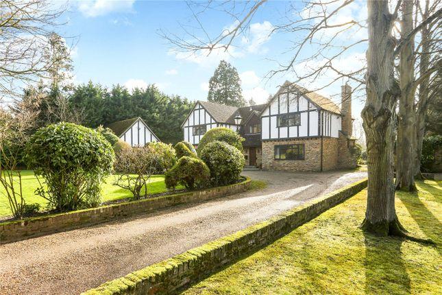 Thumbnail Detached house for sale in Bagshot Road, Chobham, Surrey
