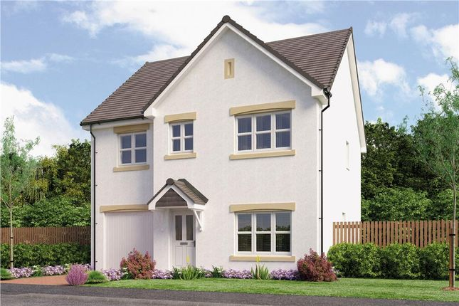 "Thumbnail Detached house for sale in ""Laing"" at Red Deer Road, Cambuslang, Glasgow"