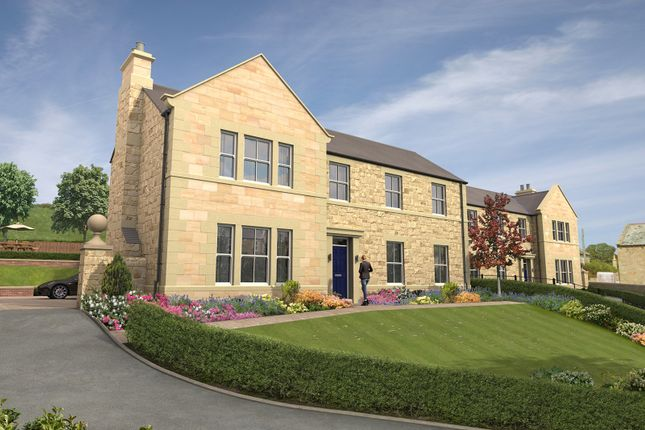 Thumbnail Detached house for sale in Main Street, Newton, Northumberland