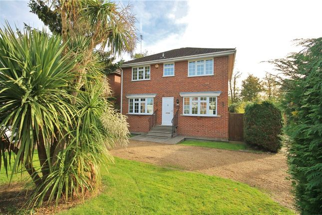 Thumbnail Detached house to rent in Gloucester Drive, Staines-Upon-Thames, Surrey
