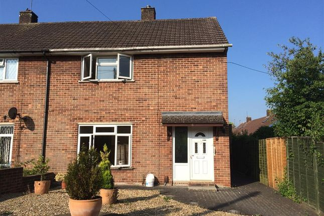 Thumbnail Property to rent in Longfield Road, Winchester