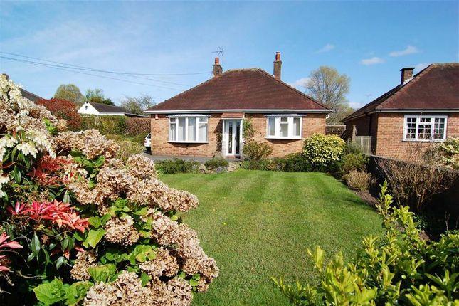 Thumbnail Detached bungalow for sale in Padgbury Lane, Congleton