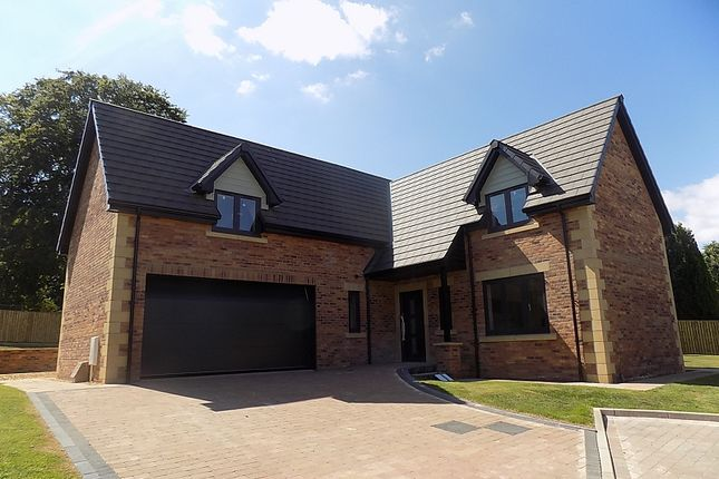 Thumbnail Detached house for sale in No.4, The Eamont, William's Pasture, Aglionby