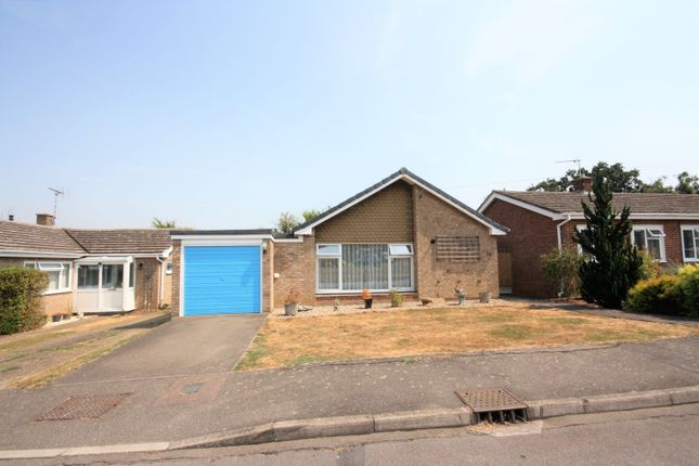 Thumbnail Detached bungalow for sale in Highfield Rise, Chelmsford