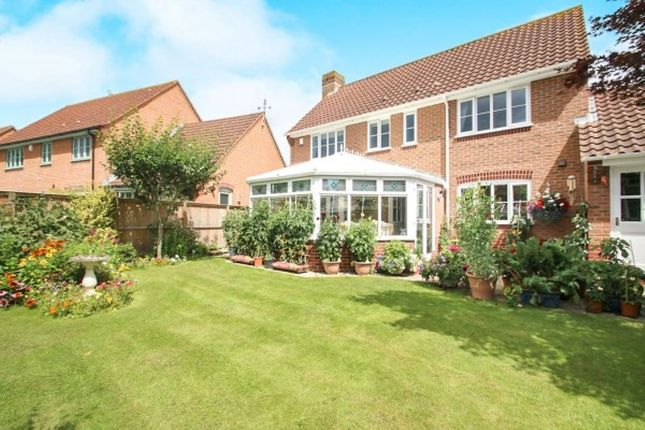 Thumbnail Detached house for sale in St. Quintin Park, Bathpool, Taunton