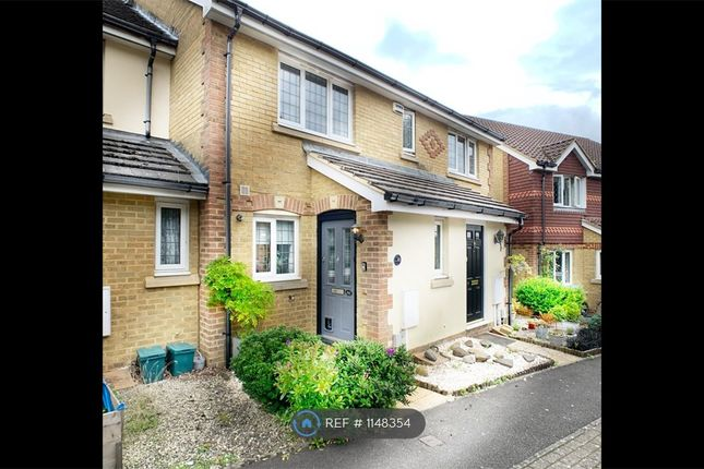 Thumbnail Terraced house to rent in Strathcona Gardens, Knaphill, Woking