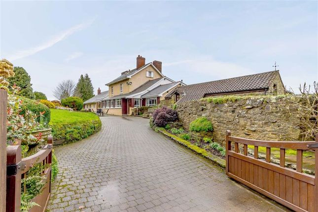Thumbnail Detached house for sale in Belmont Lane, Christchurch, Coleford, Gloucestershire