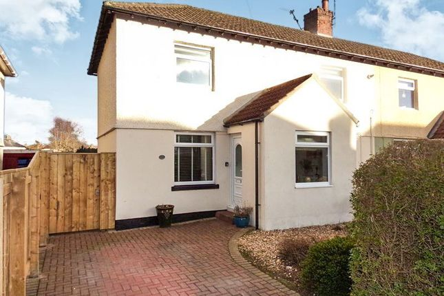 Thumbnail Semi-detached house for sale in Lindisfarne Road, Alnwick