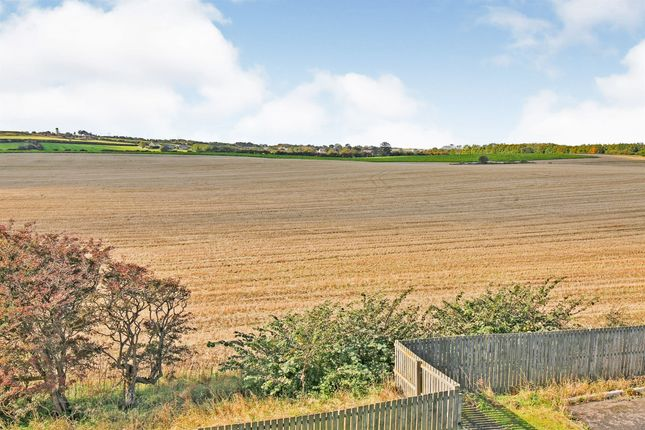 Thumbnail Flat for sale in Lady Mantle Close, Hartlepool
