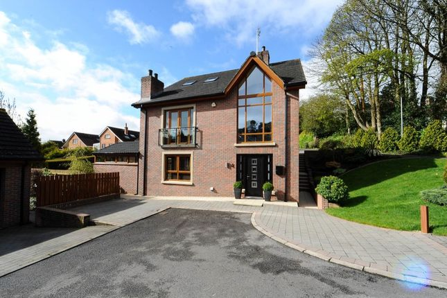 Thumbnail Detached house for sale in Ferndene Mews, Dundonald, Belfast