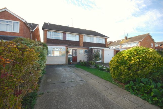 Thumbnail Semi-detached house for sale in Chestnut Walk, Chelmsford