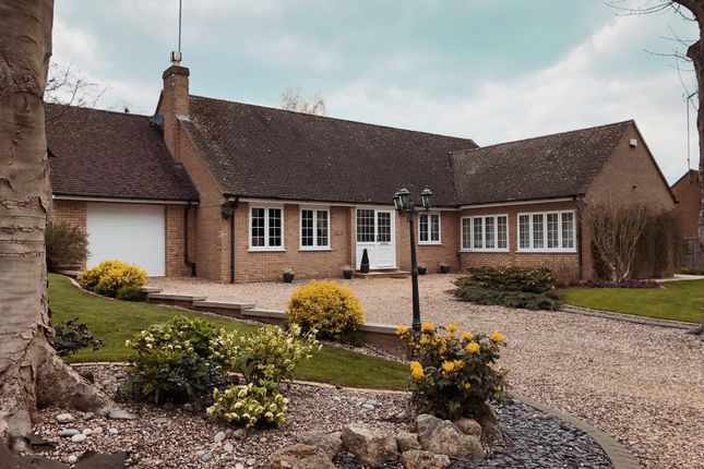 Thumbnail Detached bungalow to rent in The Green, Cranford, Kettering