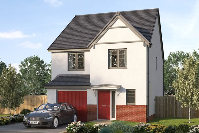 """Thumbnail Detached house for sale in """"The Narsbrook"""" at Stirling Road, Larbert"""
