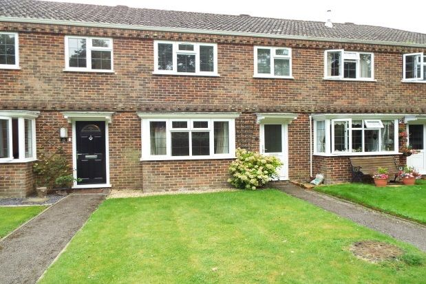 Thumbnail Property to rent in Riverside Gardens, Romsey