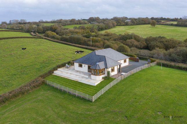 Thumbnail Bungalow for sale in Llwynonn, Nantycaws, Carmarthen, Carmarthenshire