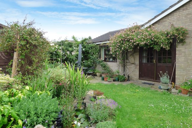 Thumbnail Detached bungalow for sale in Knipe Close, Tacolneston