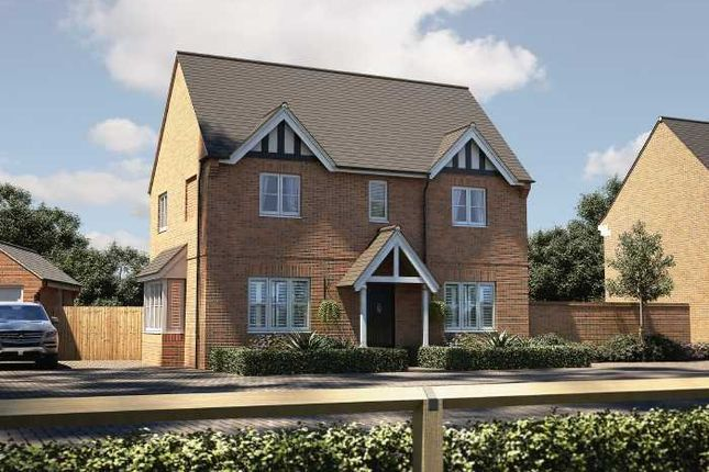 Thumbnail Detached house for sale in The Josselyns, Trimley St. Mary, Felixstowe