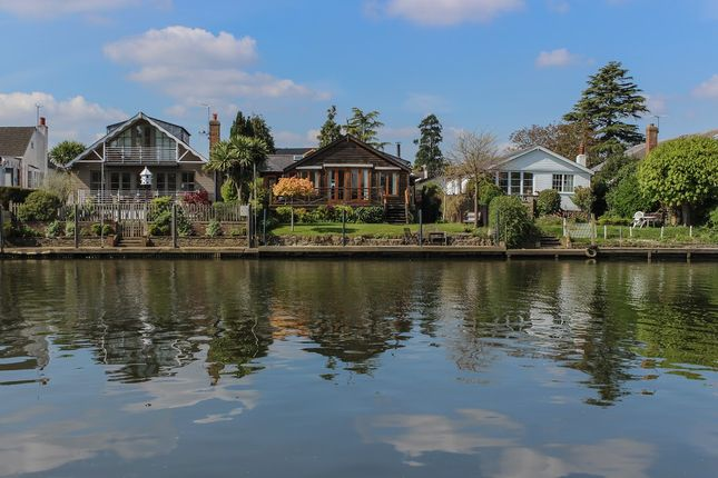 Thumbnail Detached bungalow to rent in The Island, Thames Ditton