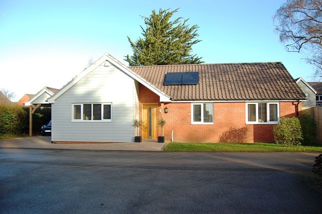 Thumbnail Detached bungalow for sale in Woolnough Road, Woodbridge