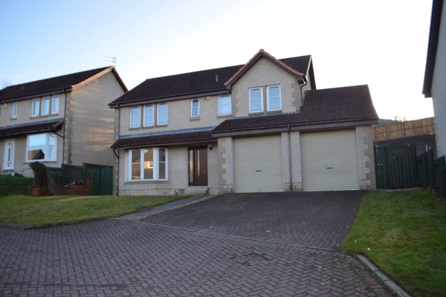 Thumbnail Detached house to rent in Mckell Court, Falkirk