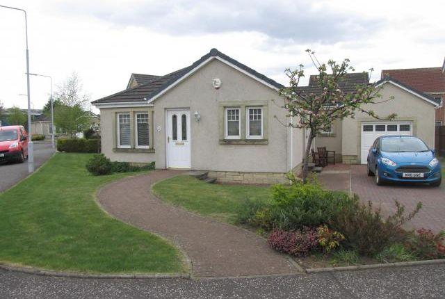 Thumbnail Bungalow to rent in 1 Rowan Lane, Leven