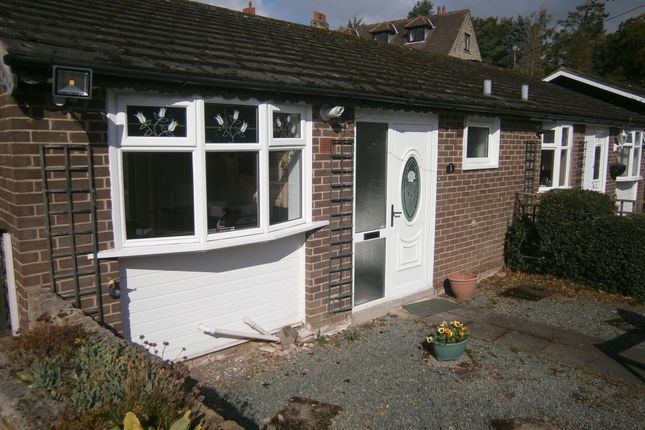 Thumbnail Bungalow to rent in Reins Court, Hexham