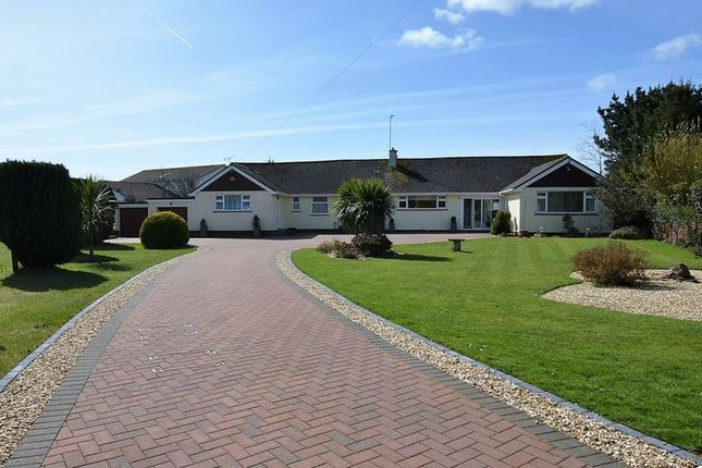 Thumbnail Bungalow for sale in Bascombe Close, Churston Ferrers, Brixham