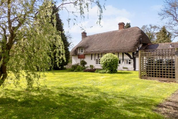 Thumbnail Property to rent in Blackmoor, Liss
