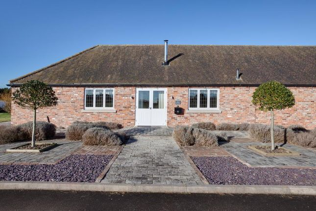 Thumbnail Equestrian property for sale in Mattersey Road, Lound, Retford